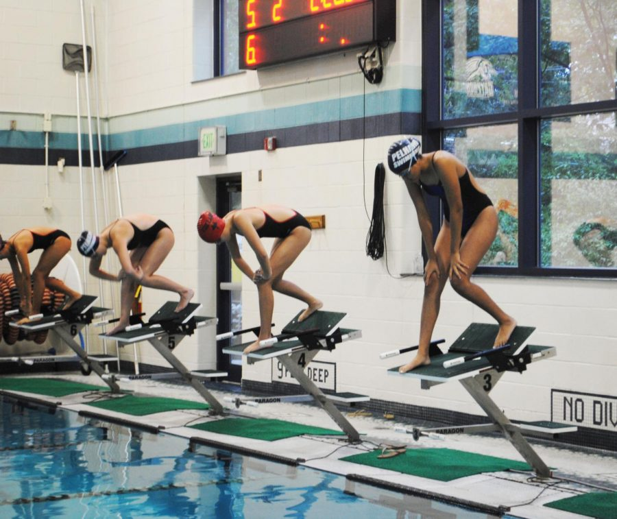 Sophomore Sofia Cedeno (far right) gets ready to dive into her race.