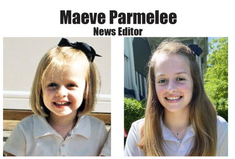 Pel Mel Farewell - Maeve Parmelee