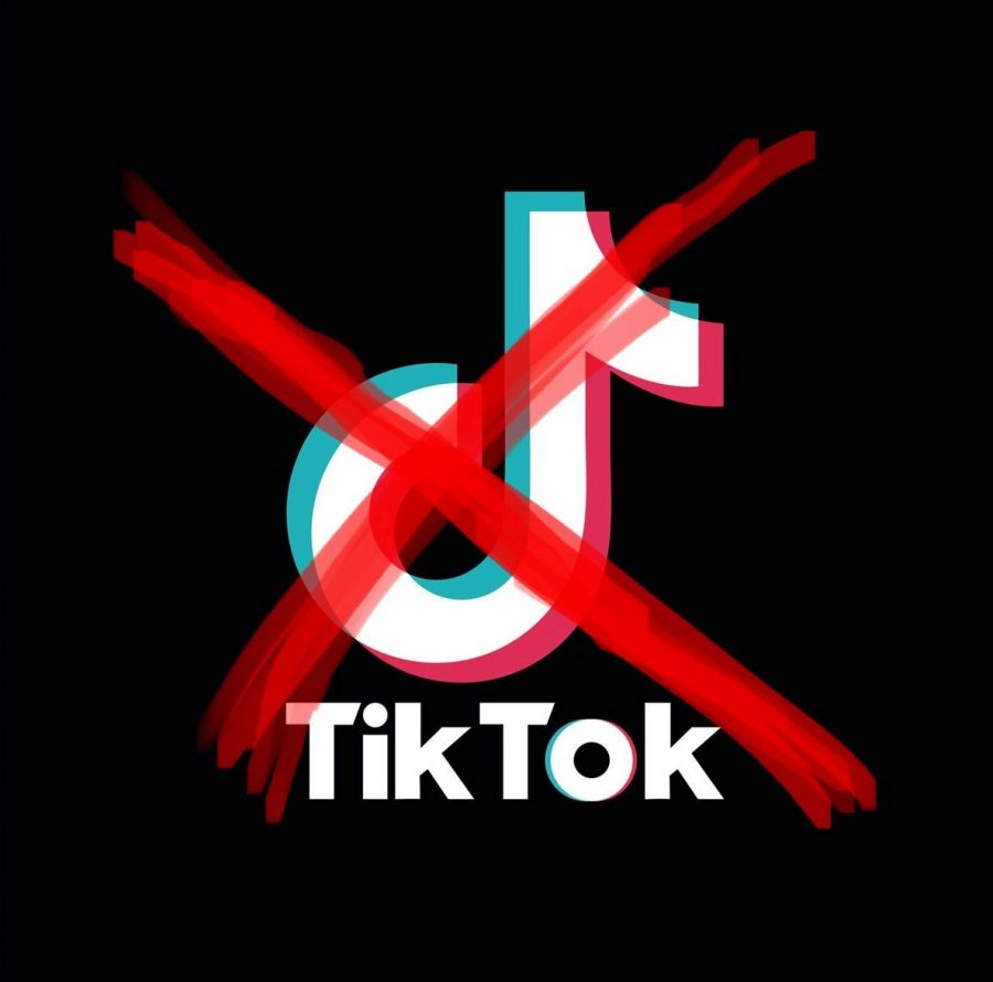 Point/Counterpoint: TikTok Should Be Banned for American Audiences