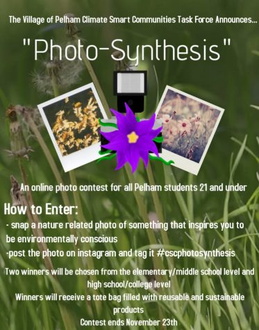 Climate Smart Community to Hold Environmental Photo Contest